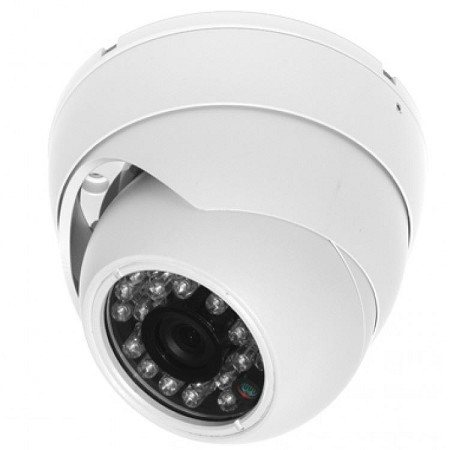Hybrid Infrared Eyeball Dome Camera with 3.6mm Lens