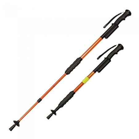 ZAP Hike 'n Strike Walking Stick