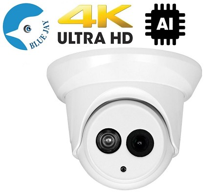 4K 8MP IP Dome With Wide Angle Lens And AI Functions